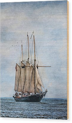 Tall Ship Denis Sullivan Wood Print by Dale Kincaid