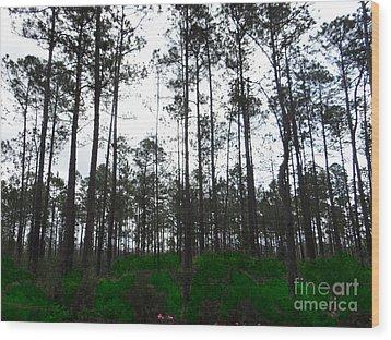 Tall Tree Forest Wood Print by Ecinja Art Works