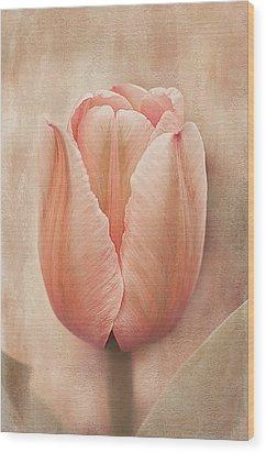 Talulah Wood Print by Faith Simbeck