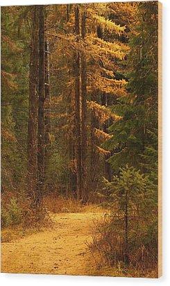 Tamarack Glow Wood Print