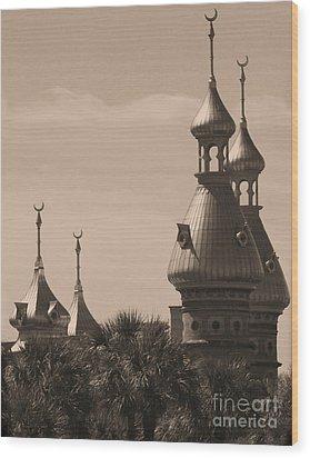 Tampa Minarets  Wood Print by Carol Groenen