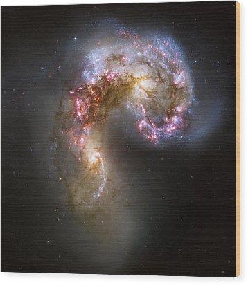 Tangled Galaxies Wood Print by Adam Romanowicz