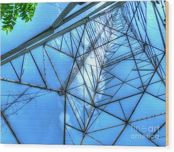 Tangled Web Wood Print by MJ Olsen