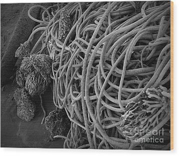 Tangles Of Seaweed 2 Bw Wood Print by Chalet Roome-Rigdon