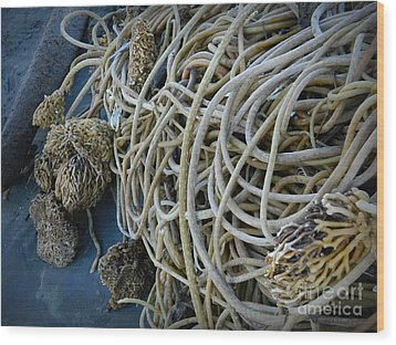 Tangles Of Seaweed 2 Wood Print