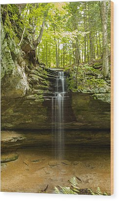 Tannery Falls Wood Print by Jill Laudenslager