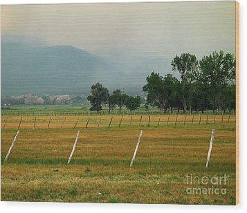 Taos Fields Wood Print by Steven Ralser