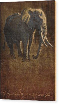 Tarangire Bull 2 Wood Print by Aaron Blaise