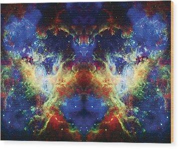 Tarantula Reflection 2 Wood Print by Jennifer Rondinelli Reilly - Fine Art Photography