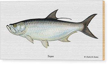 Tarpon Wood Print by Charles Harden