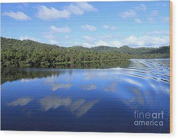 Tasmanian Reflexions All Profits Go To Hospice Of The Calumet Area Wood Print