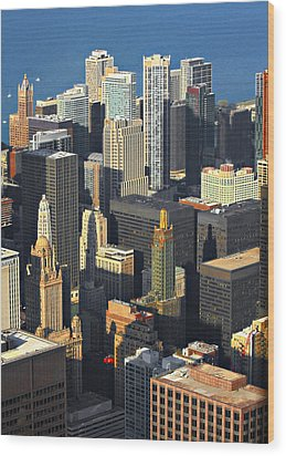 Taste Of Chicago From Above Wood Print by Christine Till