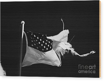 Tattered Torn Worn Us Flag Flying From Flagpole Wood Print by Joe Fox