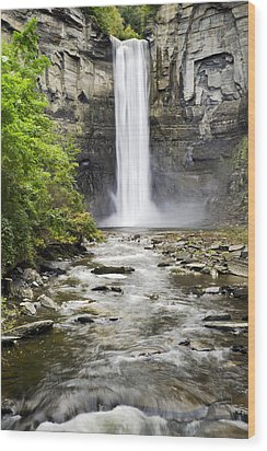 Taughannock Falls And Creek Wood Print by Christina Rollo
