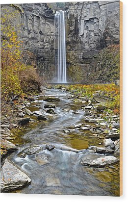 Taughannock Falls Wood Print by Frozen in Time Fine Art Photography