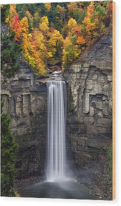 Taughannock Wood Print by Mark Papke