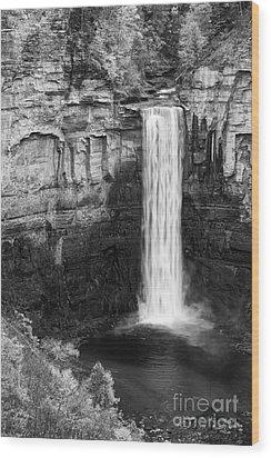 Taughannock Monochrome II Wood Print