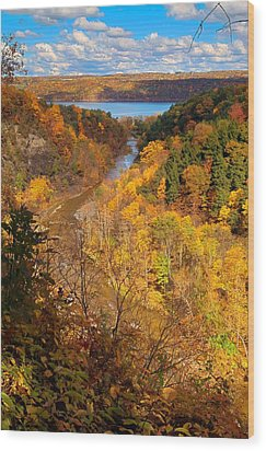 Wood Print featuring the photograph Taughannock River Canyon In Colorful Fall Ithaca New York by Paul Ge