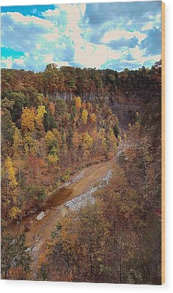 Wood Print featuring the painting Taughannock River Canyon In Colorful Fall Ithaca New York V by Paul Ge