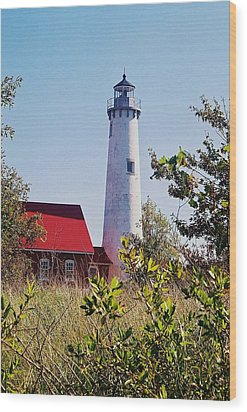 Tawas Point Lighthouse...from Tawas Bay Side Wood Print by Daniel Thompson