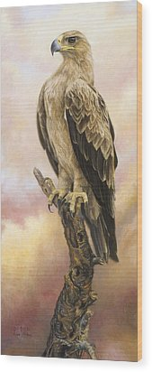 Tawny Eagle Wood Print by Lucie Bilodeau