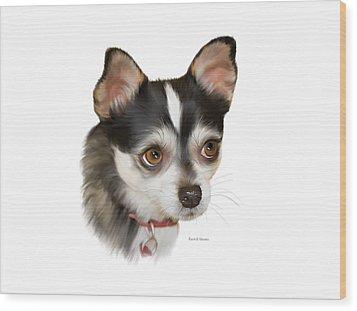 Teacup Chihuahua Wood Print by Angela A Stanton