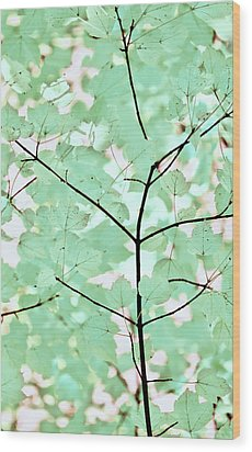 Teal Greens Leaves Melody Wood Print by Jennie Marie Schell