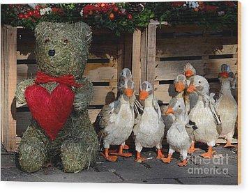 Teddy Bear With Flock Of Stuffed Ducks Wood Print by Imran Ahmed