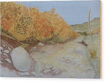 Tejas Creek Experiment - 7 Wood Print by Joel Deutsch