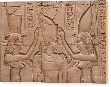 Temple Of Horus Relief Wood Print by Stephen & Donna O'Meara