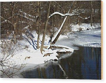 Ten Mile River Ne View Wood Print by Barbara Giordano