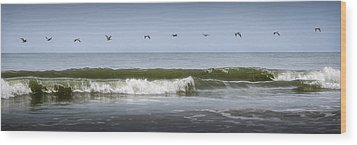 Wood Print featuring the photograph Ten Pelicans by Steven Sparks