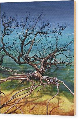 Ten Thousand Islands Wood Print by Urszula Dudek