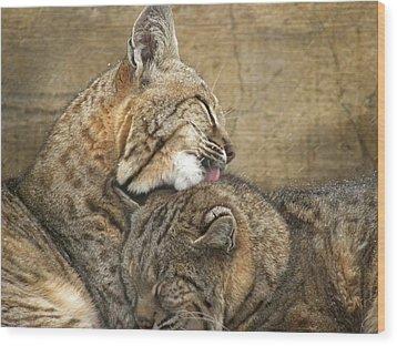 Tender Loving Care Wood Print by Teresa Schomig