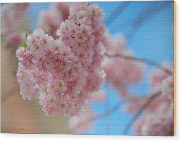 Tender Whisper. Pink Spring In Amterdam Wood Print by Jenny Rainbow