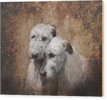 Tenderness Wood Print by Mary OMalley