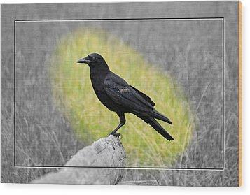 Tennessee Crow Wood Print