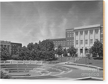 Tennessee State University Averitte Amphitheater Wood Print by University Icons