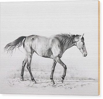 Tennessee Walking Horse Wood Print by Karen Broemmelsick