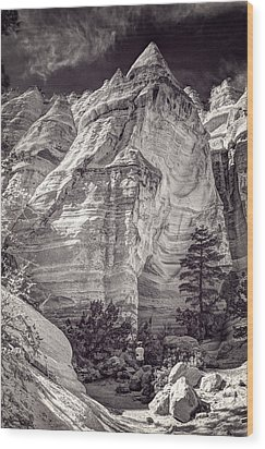Wood Print featuring the photograph Tent Rocks No. 2 Bw by Dave Garner