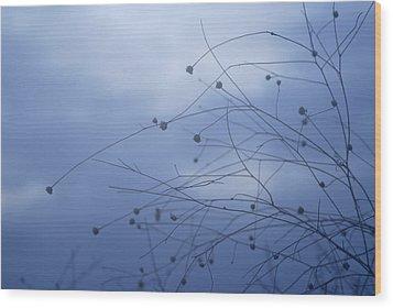 Tentaculos Del Cielo Wood Print by Guido Montanes Castillo