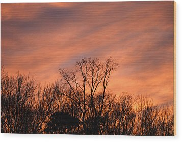 Wood Print featuring the photograph Tequila Sunset by Bill Swartwout