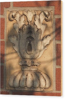 Wood Print featuring the photograph Terracotta #1 by Scott Kingery