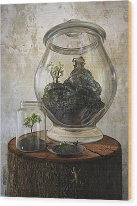 Terrarium Wood Print by Cynthia Decker