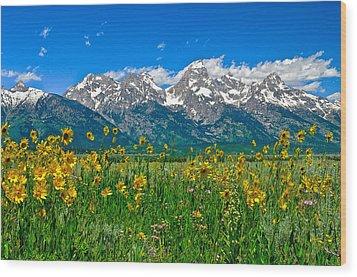 Teton Peaks And Flowers Wood Print