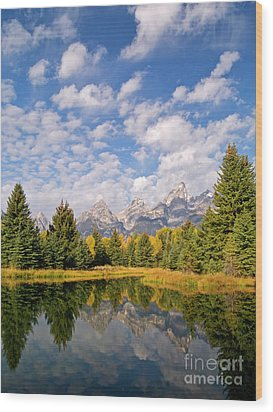 Teton Reflections Wood Print by Alex Cassels