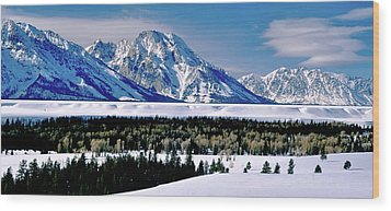 Teton Valley Winter Grand Teton National Park Wood Print by Ed  Riche