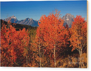Wood Print featuring the photograph Tetons Colors Of Autumn by Aaron Whittemore