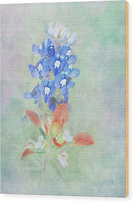 Texas Bluebonnet And Indian Paintbrush Wood Print