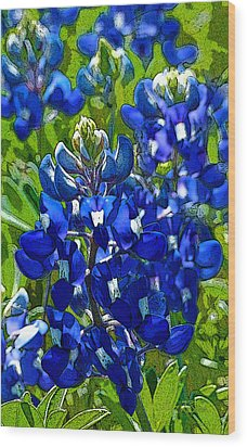 Texas Bluebonnets - Posterized Image Wood Print